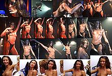 Shannon Elizabeth topless collage from Dish Dogs