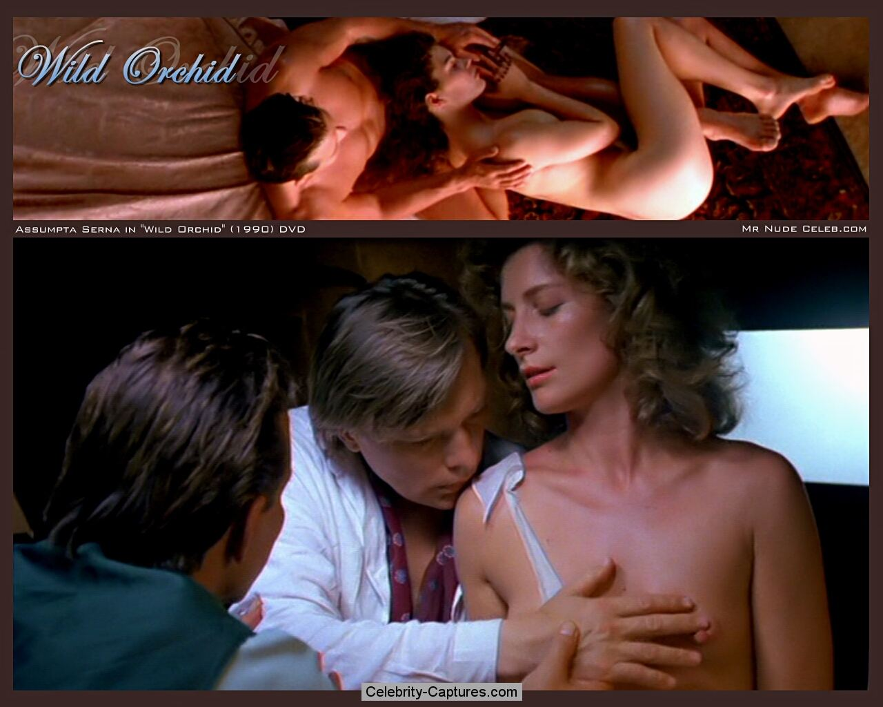 Assumpta Serna topless in the car scenes from Wild Orchid: www.celebrity-captures.com/posts/0000131.shtml